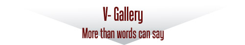 V-Gallery - More than words can say